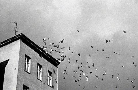 west berlin (1985-1990)